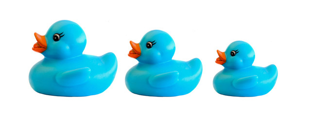 Family of three blue plastic duck