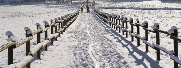 sentiero neve