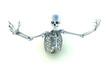 Skeleton In A Pose