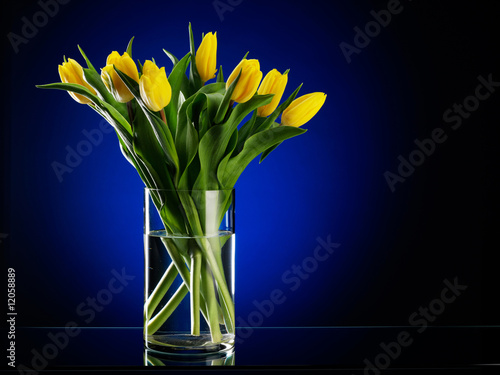 Bouquet from yellow flowers in a vase on a dark blue background