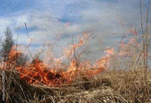 Fires Flare