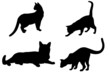 Gatti Sagome-Cats shapes-Chat vectoriel