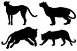 Felino Vettoriale-Big Cats Vecto-Felin Vectoriel poster