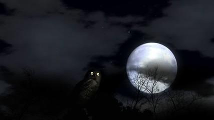 Owl HD 720