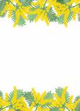 Cornice di mimosa set #1 poster