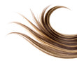 long hair - 12134872