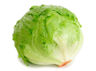 Cabbage lettuce isolated on white