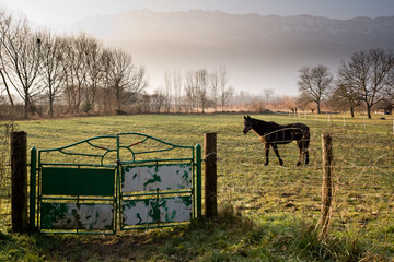 Paysage de Savoie en hiver