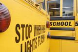 Stop When Red Lights Flash on School Bus