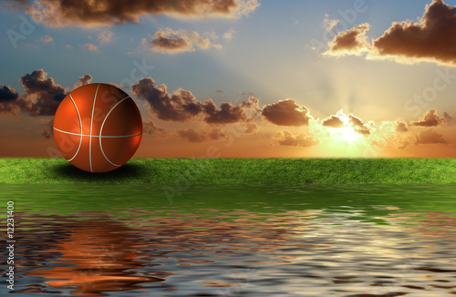 basket ball on the green grass with sky background