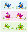 Birds in various color