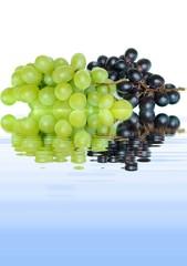 Weintrauben 5.2