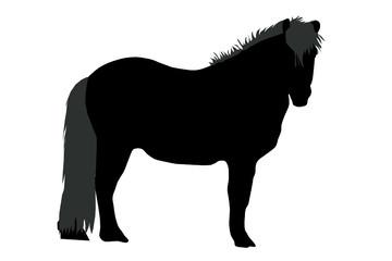 Ponymähne