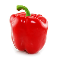 Colored red paprika isolated