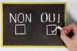 referendum oui non