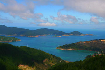 Oyster bay, close to Picton