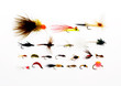 Flies for fly fishing - 12257263