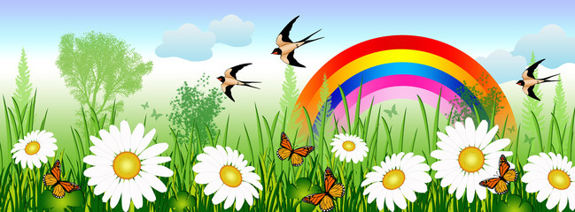 Spring time with daisies, butterflies, swallows and a rainbow