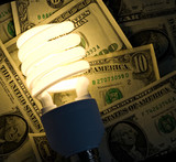 Usage of fluorescent lamps reduces electricity bills poster