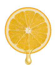 Orange illustration 4
