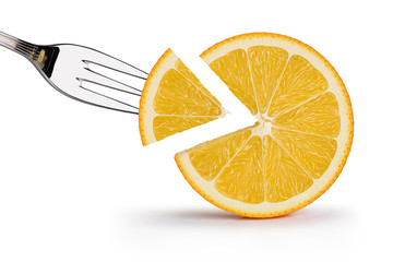 Orange illustration 6