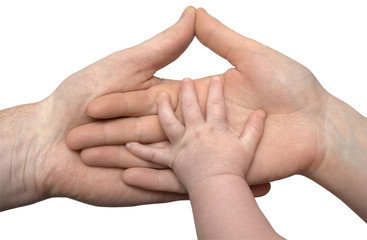 Baby's hand holding the hands of parents isolated