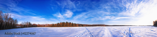 winter panorama by russian field