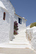 Curved path past white walled building Skopolos near island of S