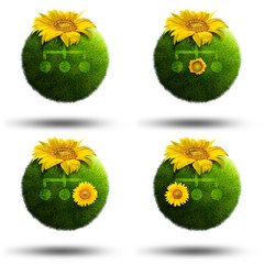 Grass planets illustrating computer network made with sunflowers