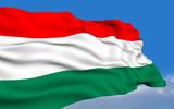 Hungarian Flag poster