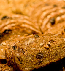 Grain and Fruit Bread