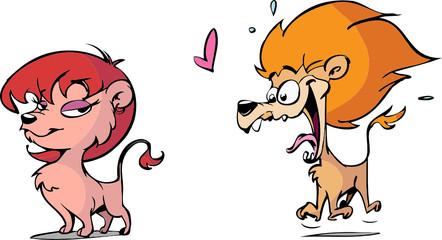 male lion in love