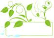 feuilles printanières