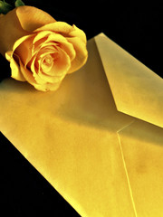 Rose And Envelop