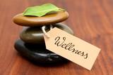 Wellness - 12370267