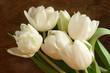 obraz - Springtime Elegance
