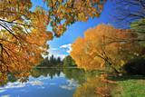 Skopje city park in autumn, Macedonia poster