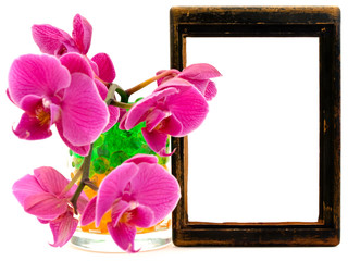 pink orchid and vooden frame
