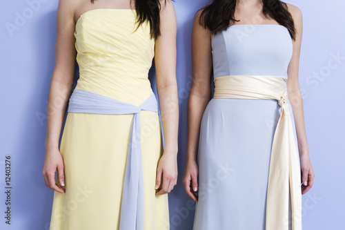 Midsection of two bridesmaids standing.