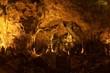 Carlsbad Caverns - 12405667