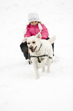 Sledding with dog