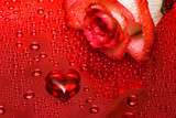 red heart and rose with water droplets