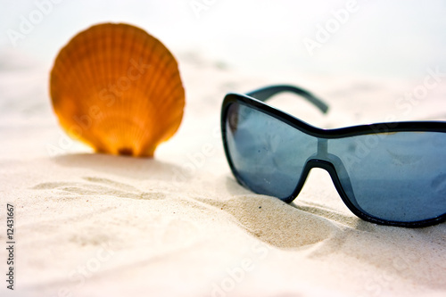 Seashell and sunglasses