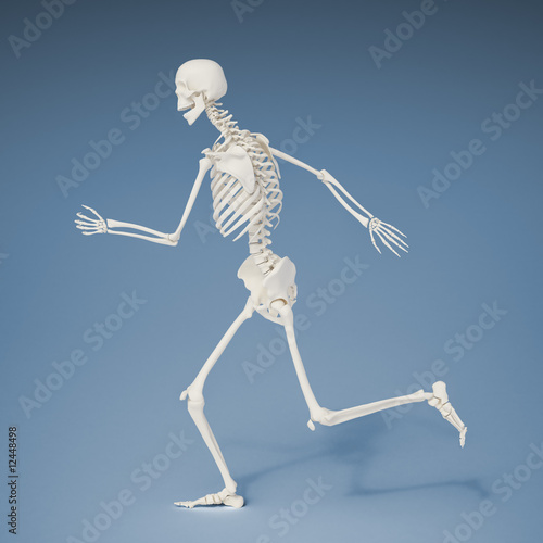Running human skeleton