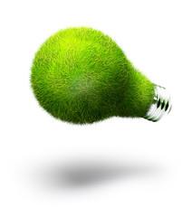 lightbulb made of green grass isolated on white