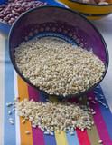 arroz integral poster