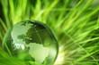 Quadro Glass earth in grass