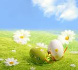 Fototapety Easter Eggs sitting on grass