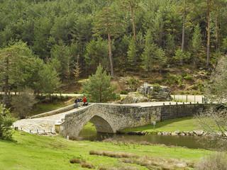 Puente de piedra sobre el Duero