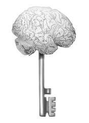chiave dell'intelligenza